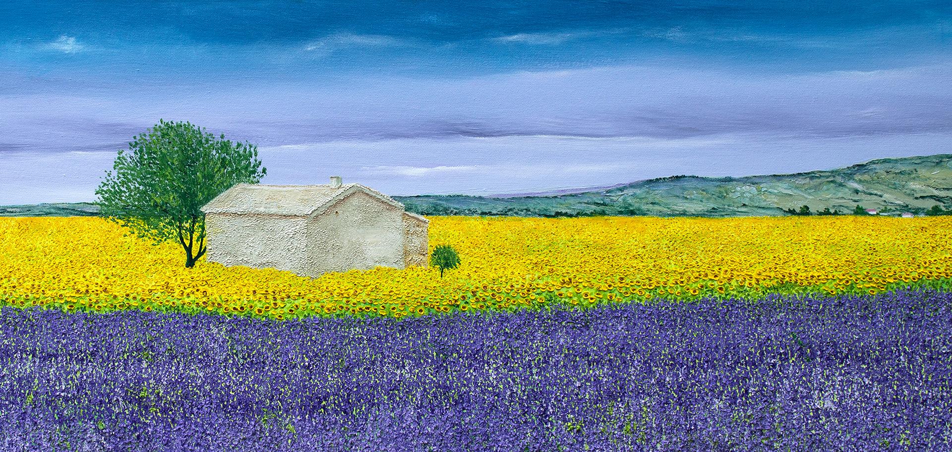 Lavender House by David J Williams